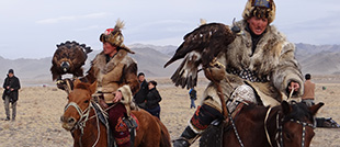Golden Eagle Festival & Hustai National Park 2017-2018